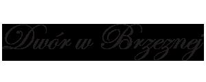 projektowanie stron internetowych Nowy Sącz, Limanowa, Grybów, Krynica, tworzenie stron internetowych, strony internetowe Nowy Sącz, Chełmiec, Szczawnica, Krościenko, Łącko, banery reklamowe, informatyk, pozycjonowanie stron, wizytówki, ulotki, plakaty, foldery, katalogi, www.pawgaw.pl